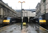 91's at Edinburgh Waverley